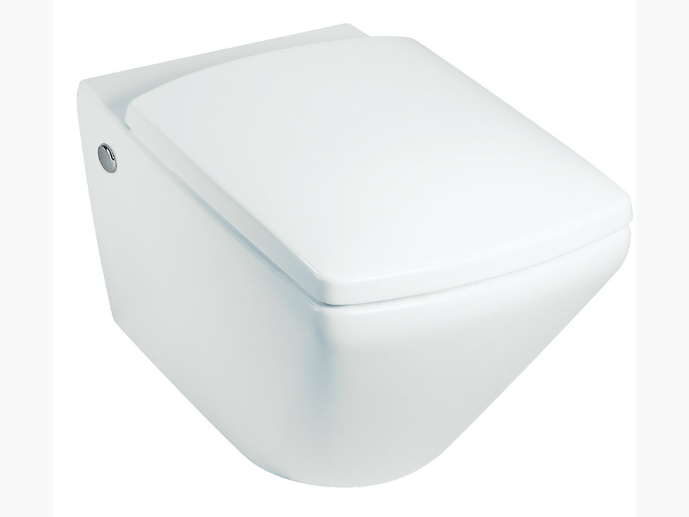 Escale Wall Hung Toilet With Quiet Close Tm Seat And