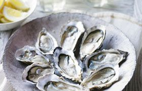 Oyster's with Hartleys Block Sauvignon Blanc