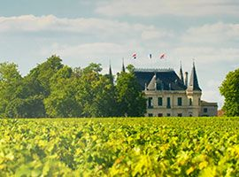 A Chateaux with vineyards
