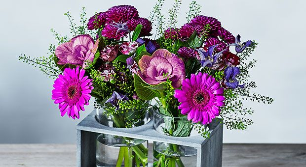 Shop all Waitrose flowers & plants