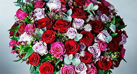 valentine's day flowers  waitrose florist, Beautiful flower
