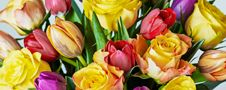 Buy flowers & plants from Waitrose Florist