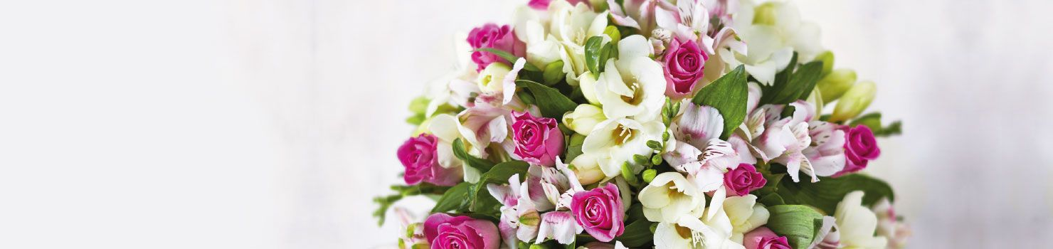 Mother's Day from Waitrose Florist