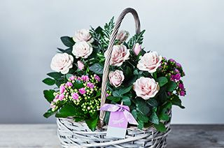 Waitrose florist same and next day flower delivery mothers day plants negle Image collections