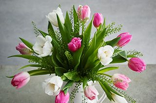 Waitrose florist same and next day flower delivery spring tulips negle Image collections