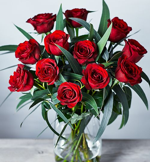 A Dozen Red Roses A Dozen Red Roses ...