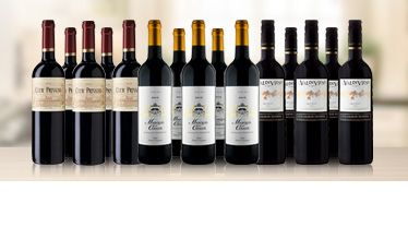Telegraph Fifteen Bordeaux Favourites