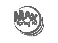 Max Spring FX
