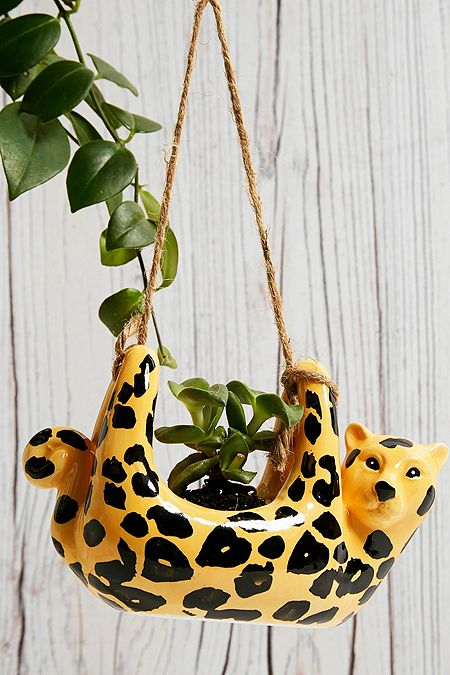 Home Plants Planters Terrariums Urban Outfitters Uk