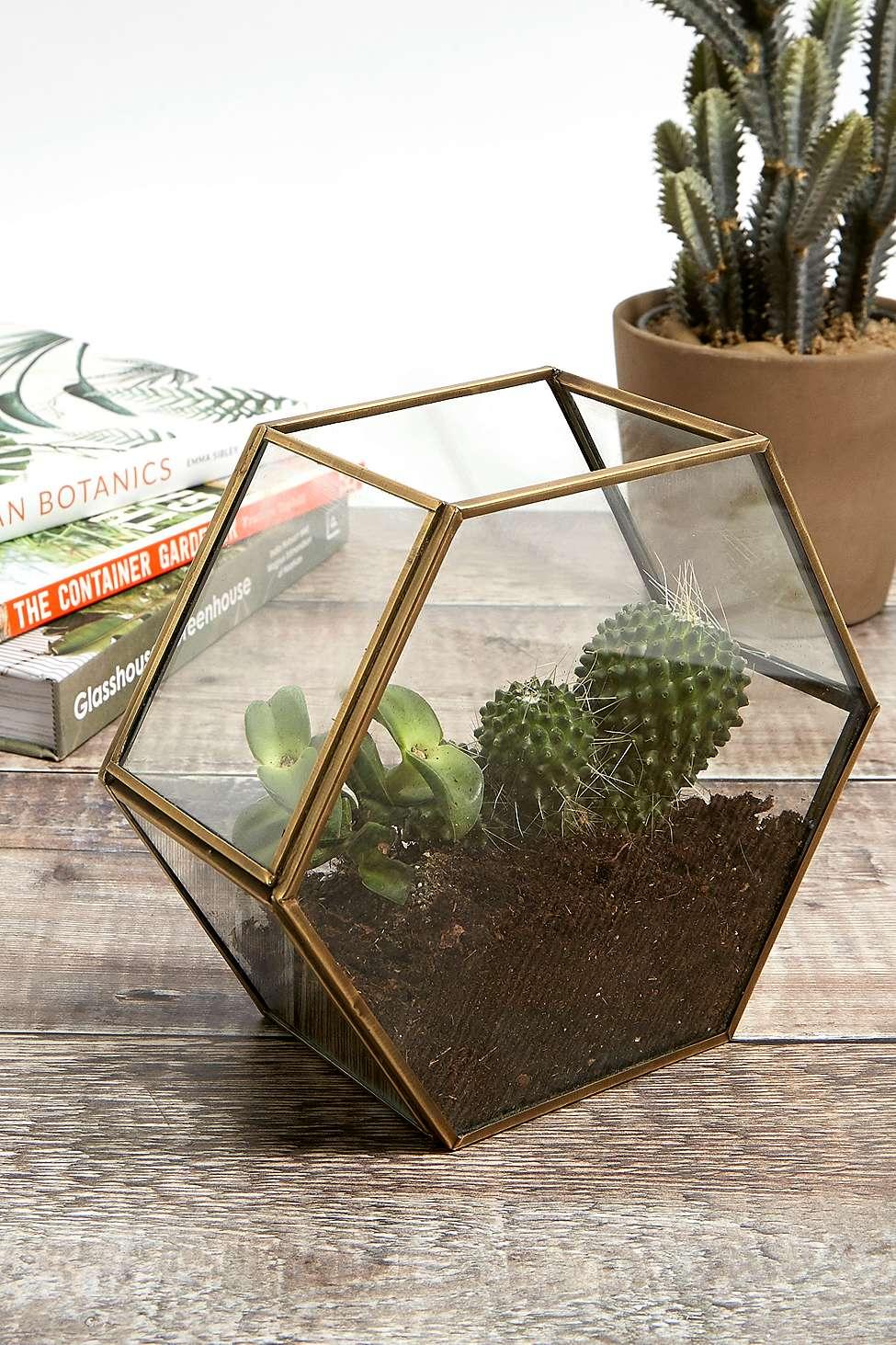 Hexagonal Brass Terrarium Urban Outfitters Uk