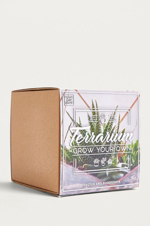 Grow Your Own Terrarium Kit Urban Outfitters Uk