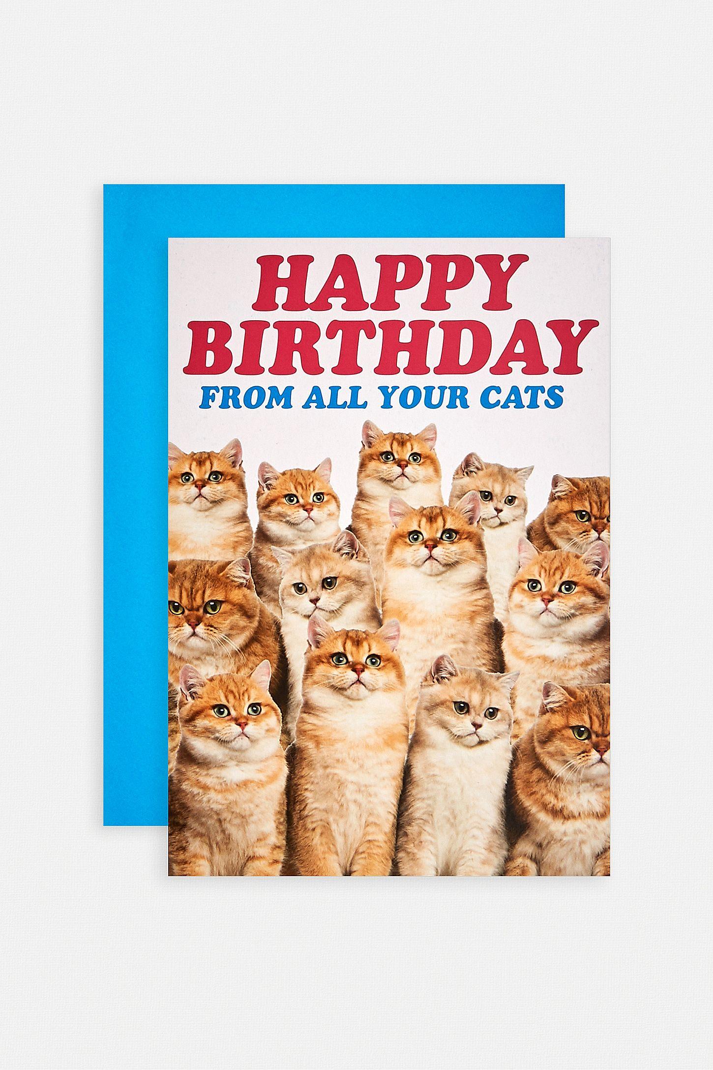 Geburtstagskarte Happy Birthday From All Your Cats