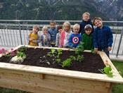 Kindergartenkinder mit Gemüsehochbeet