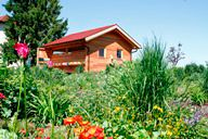 Haus umgebene von einem Garten