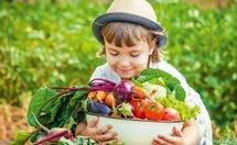Kind mit Hut und voller Obstschüssel