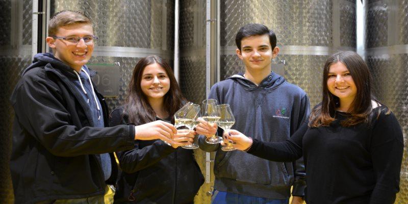 Weinbauschule