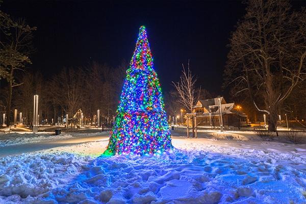Ein Christbaum mit bunten Lichtern, der im Schnee draußen in einem Park steht.