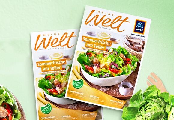 Zwei Exemplare des Meine-Welt-Magazins sind auf einem grünen Hintergrund aufgelegt.