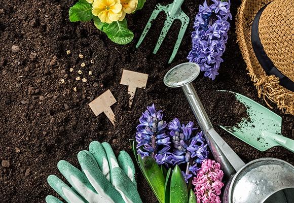 Auf feiner Erde stehen oder liegen bunte Blumen, eine silberne Gießkanne, Schaufel und ein ausgefranster Strohhut.