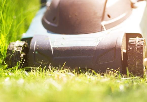 Ein schwarzer Rasenmäher steht auf gemähtem Rasen. Rechts von ihm ist das Gras bereits kurz, links von ihm ist es noch hoch und muss gekürzt werden.