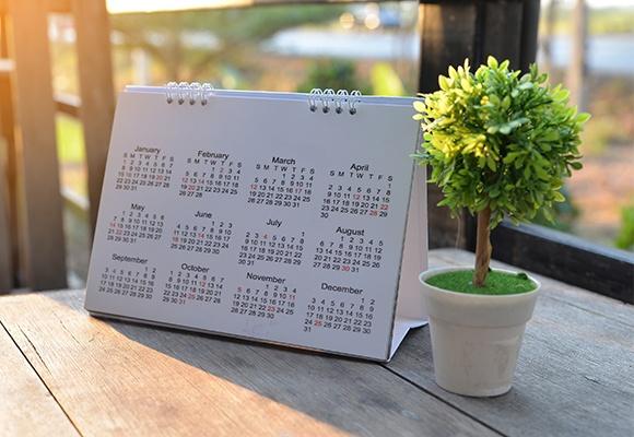 Ein Kalender, auf dessen Blatt alle Monate und Tage aufgelistet sind, steht draußen auf einem Tisch, neben einer unechten Minipflanze.