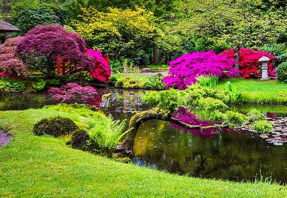 Ein großer Teich mit Seerosen wird von pinken und roten Sträuchern umrandet. Der Garten ist sehr gepflegt und doch natürlich.