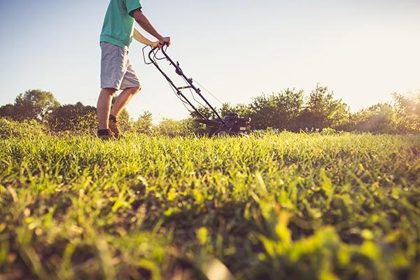 Rasen wird gelb beleuchtet, während im Hintergrund ein Mann den Rasen mäht.