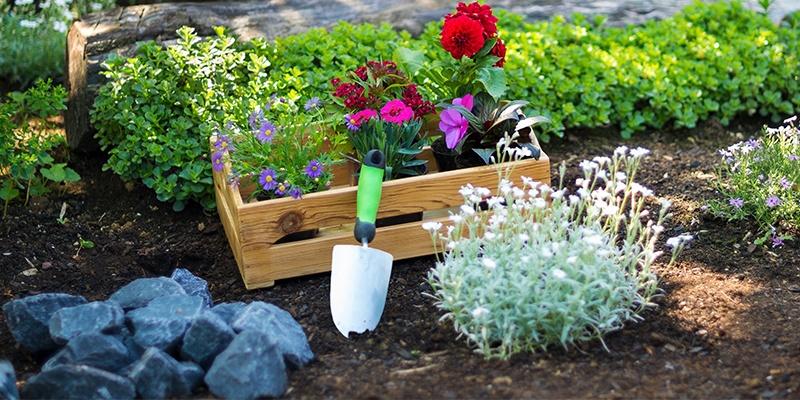 In einem Beet wachsen bunte Pflanzen und Kräuter, in der Mitte steht eine kleine Holzkiste mit weiteren Pflanzen in Töpfen.