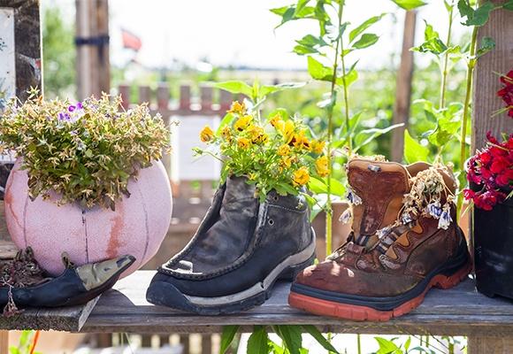 Ein alter Basketball und zwei unterschiedliche Schuhe, die zu Blumentöpfen umfunktioniert wurden.