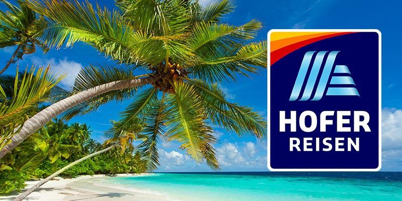 Ein weißer Sandstrand mit einer Palme. Daneben das HOFER REISEN Logo.