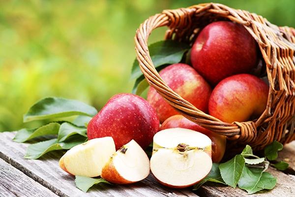 Ein Korb mit Äpfeln liegt auf einem Holztisch. Im Vordergrund ist ein Apfel in mehrere Spalten aufgeschnitten.