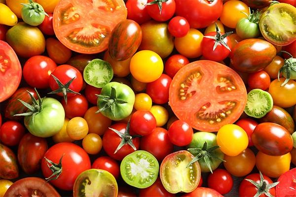 Tomaten in unterschiedlichen Farben und Größen.