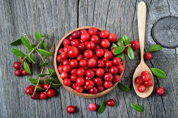 Eine Schale mit roten Cranberrys. Daneben ein Holzlöffel mit ein paar Früchten.