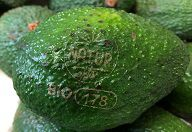 Avocado mit Natural Branding