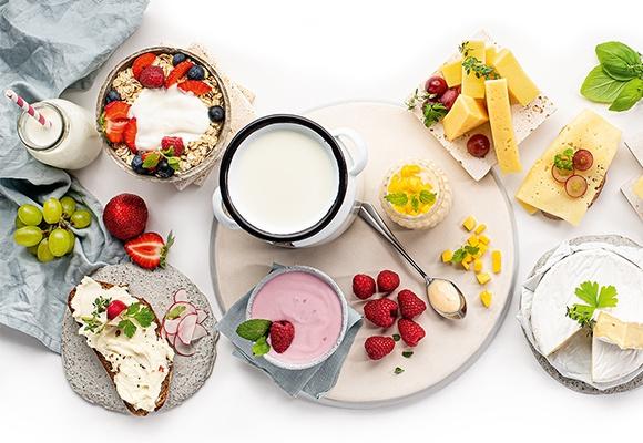 Eine große Palette aus Milchprodukten wie Joghurt, Käse, Butter und Milch stehen auf dem Tisch.