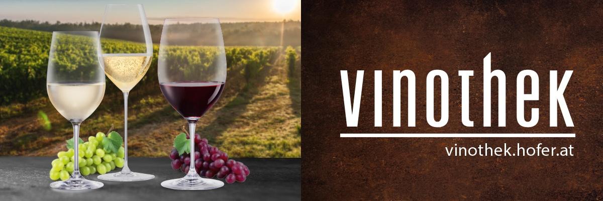 Drei Weingläser und Weintrauben stehen vor einem Weinfeld.