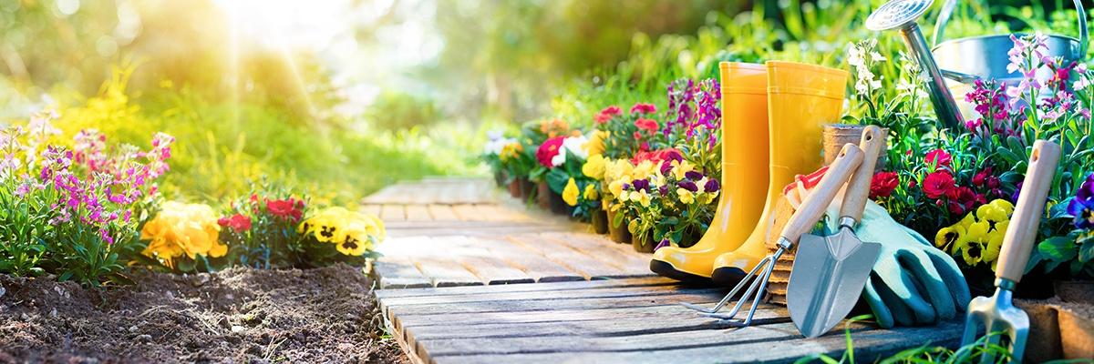 Gelbe Gummistiefel stehen neben Gartenwerkzeug wie Schaufel und Hacke. Ringsherum blühen Blumen in allen Farben und Formen.