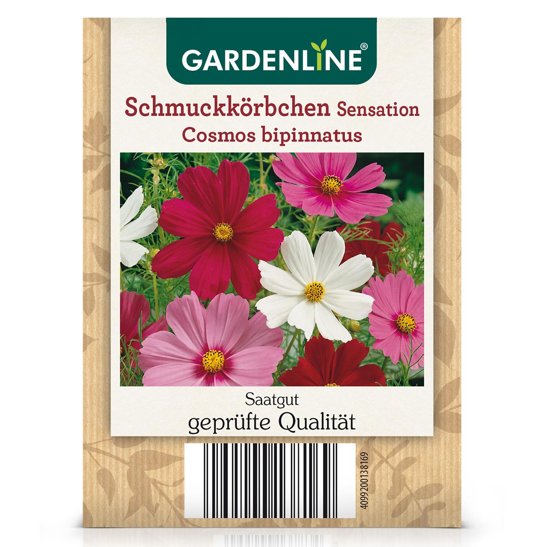 Gemüse-/Blumensamen, Schmuckkörbchen