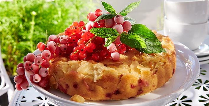Johannisbeer-Apfelkuchen