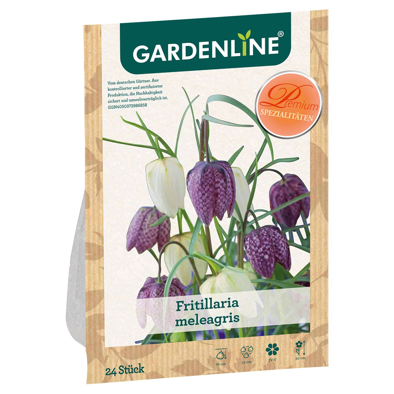 GARDENLINE® Herbstblumenzwiebel*