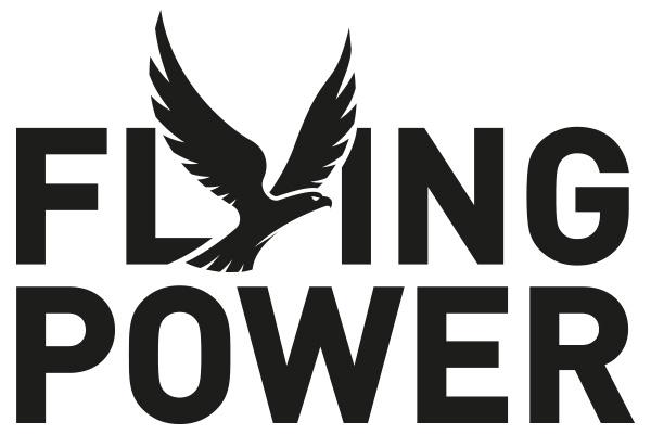 FLYING POWER-Logo