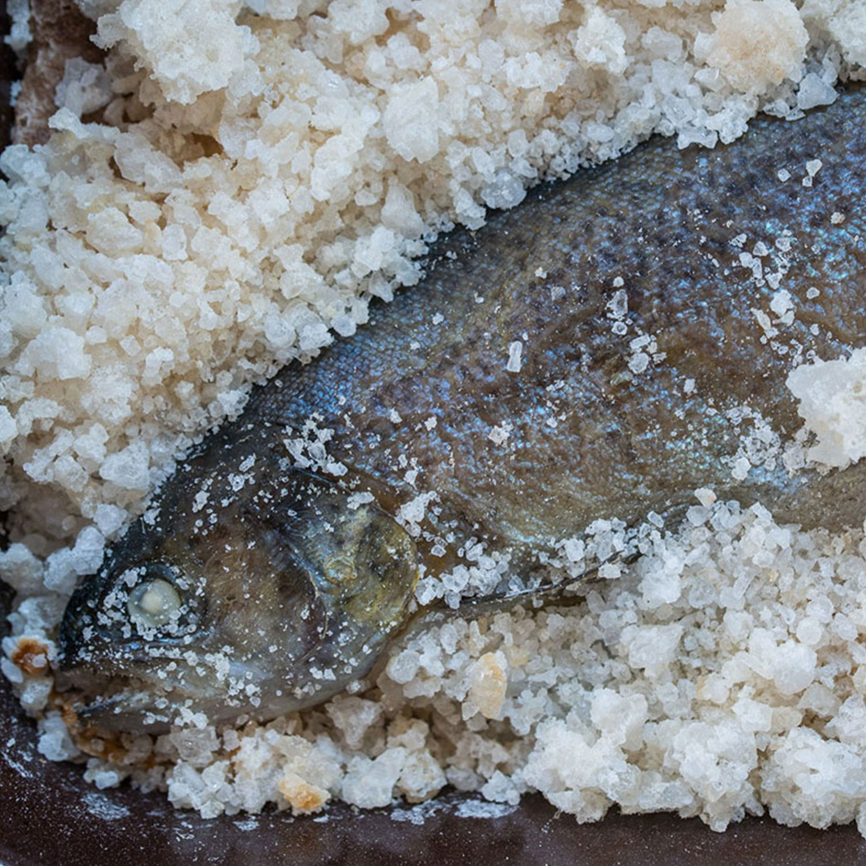 Forelle in der Salzkruste