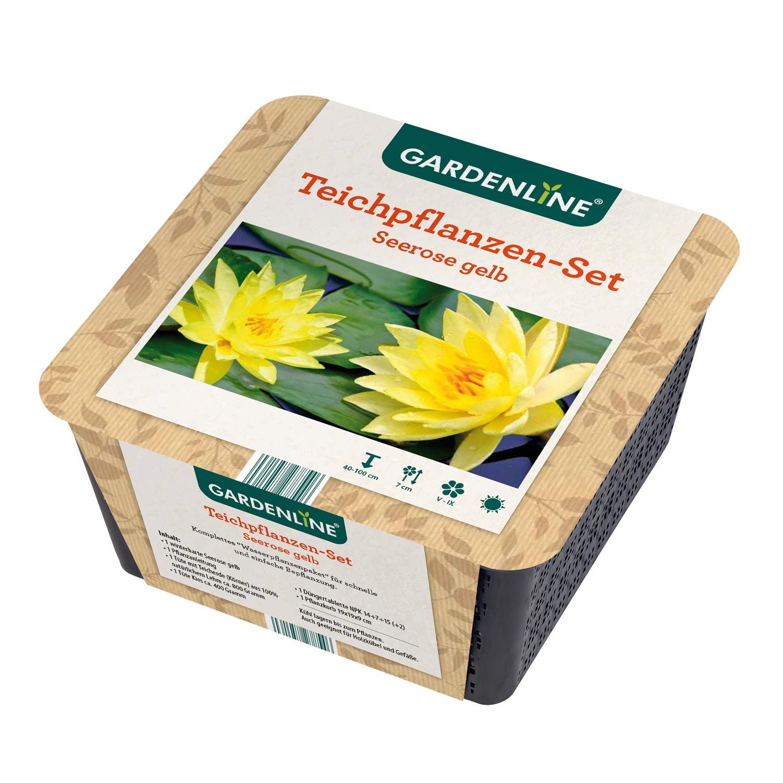 GARDENLINE® Teichpflanzen-Set*