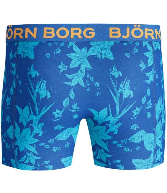 Björn Borg | 1p SHORTS BB FLOWER Directoire Blue