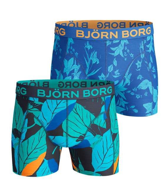 Björn Borg | 2p SHORTS BB LEAF & BB FLOWER Peacoat