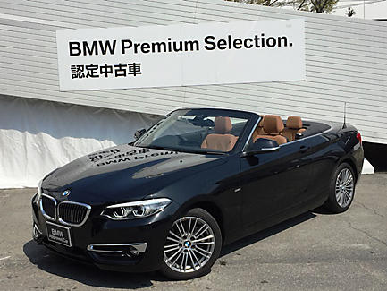 220i Cabriolet Luxury
