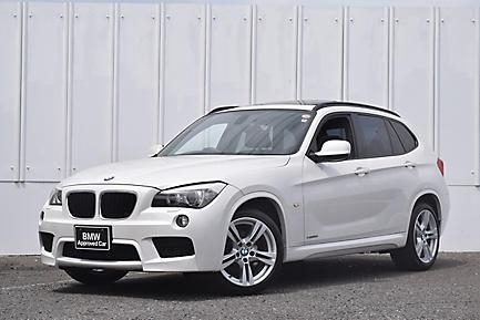 X1 sDrive18i M Sport