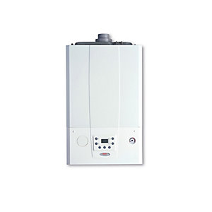 Alpha E-Tec 33kW LPG Boiler with Easy Flue 3.027375GPL