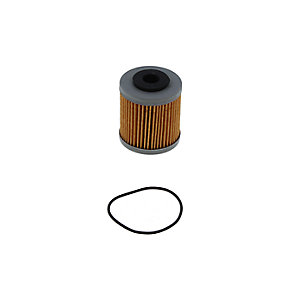 Crossland Oil Filter Element 4009 E03079D