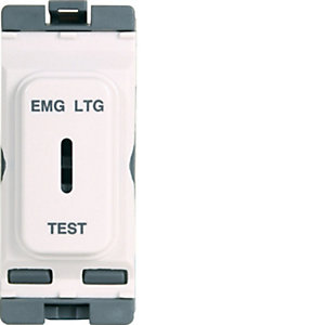 Hager 20A Double Pole Key Switch Marked 'em Ltg Test' - WMGKS/EL